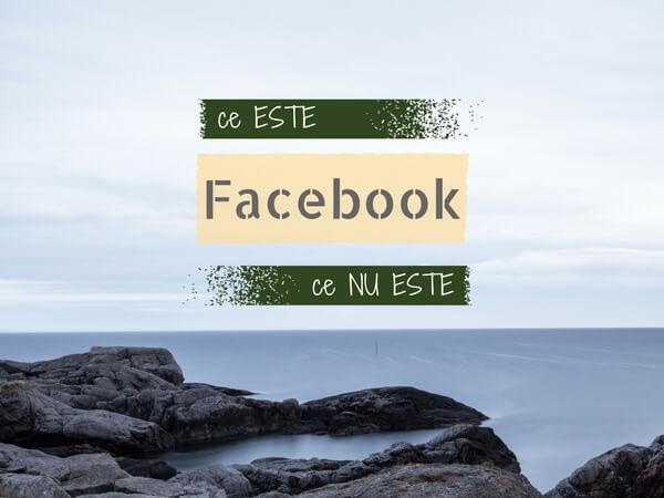 facebook-pentru-companii
