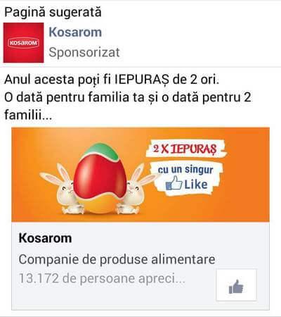 reclame-facebook-exemple-18